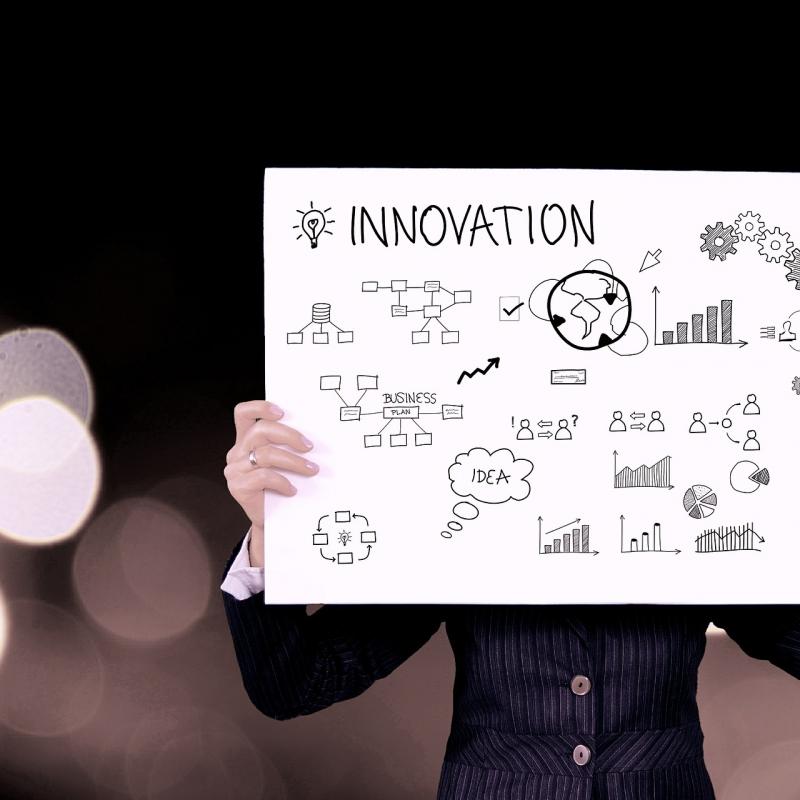 En la gestión empresarial y en la cultura de la innovación: