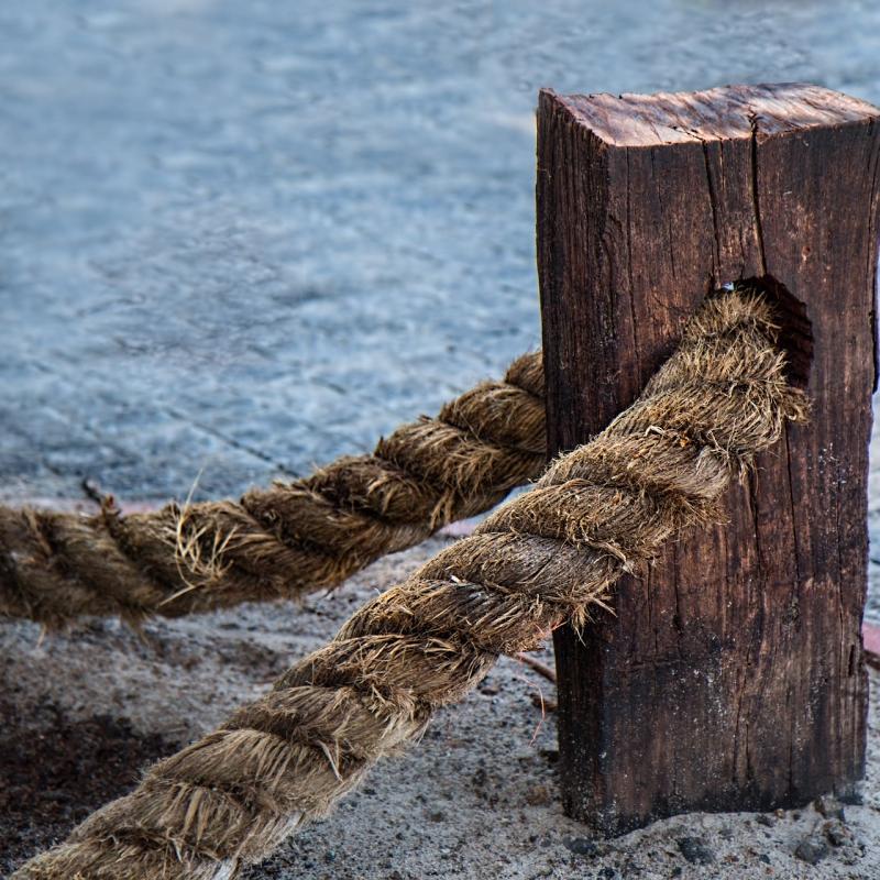 EL MEDIO PARA ASEGURAR LA CADENA DE VALOR EN LOS PROCESOS