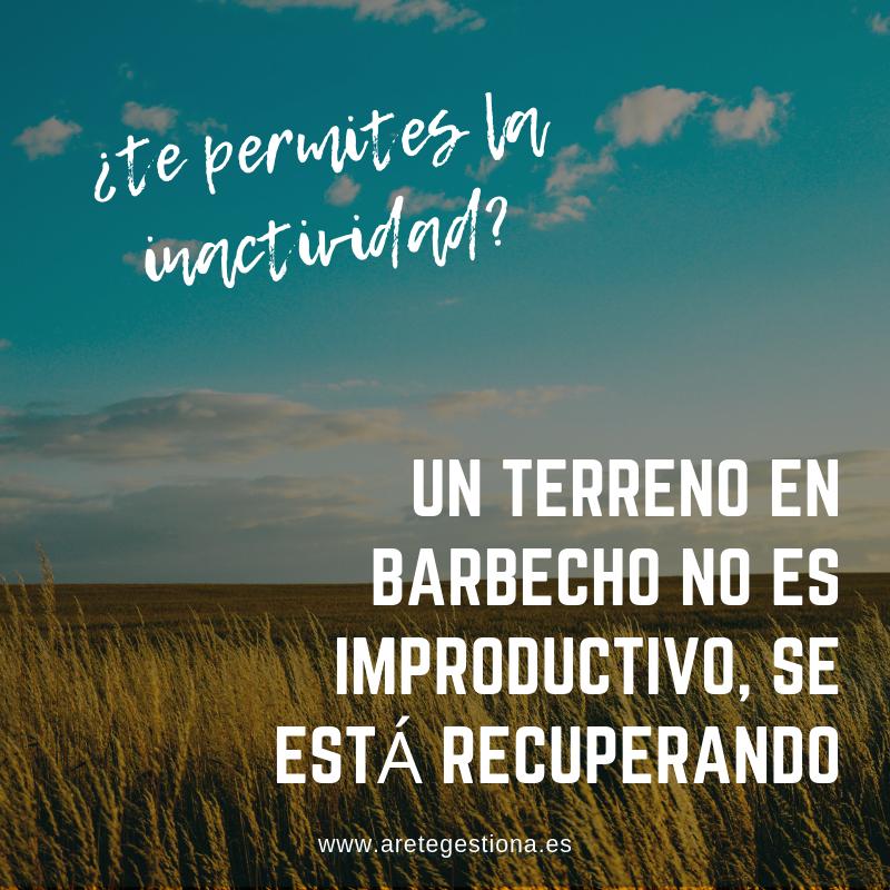Terreno_Barbecho_Inactividad